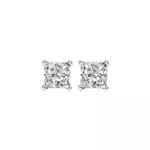 14K P/Cut Diamond Studs 1/4 ctw P1