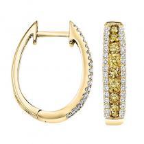 14KY Yellow & White Diamond Earrings 1 ctw